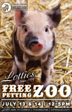 Petting zoo!