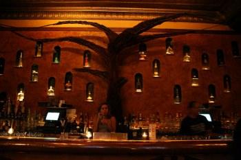 Salud Tequila Lounge - Bucktown/ Wicker Park